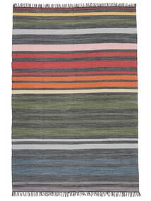 Rainbow Stripe - Cinzento Tapete 160X230 Moderno Tecidos À Mão Cinzento Claro/Cinza Escuro (Algodão, Índia)