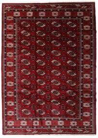 Turcomano Tapete 204X285 Oriental Feito A Mão Vermelho Escuro/Castanho Escuro (Lã, Pérsia/Irão)
